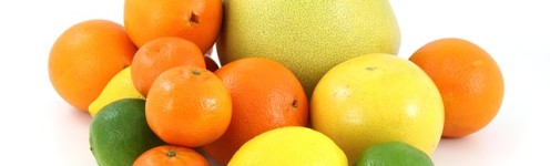 Diets that Help Burn Fat